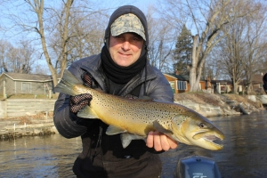 Muskegon river trout fishing