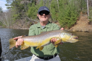Trophy Muskegon river Brown Trout