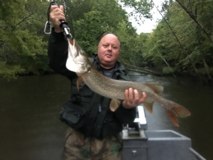 Muskegon river fishing report newaygo mi september 24 for Pere marquette river fishing report
