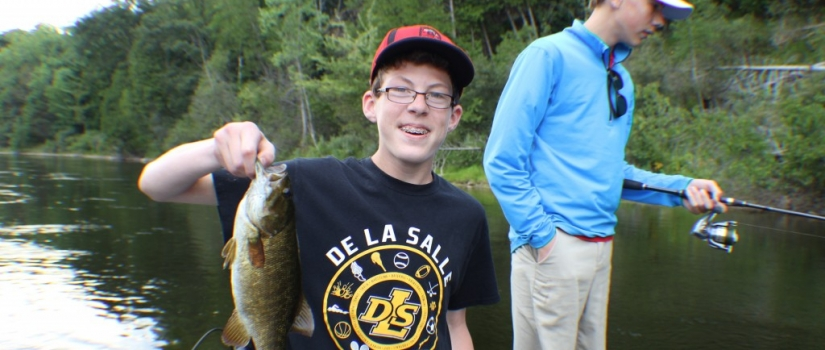 Summer Smallmouth Bass