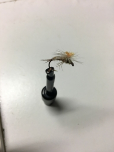Muskegon river trout fly pattern - Sulphur emerger