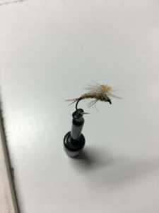 Muskegon river dry fly fishing